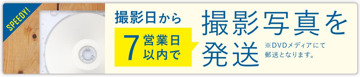 7営業日にて発送